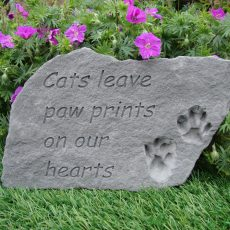 cats paw prints  92420