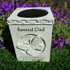 butterfly vase dad web