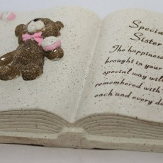 sister teddy book