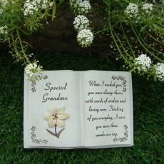 grandma lily book